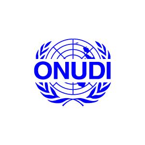 ONUDI 1